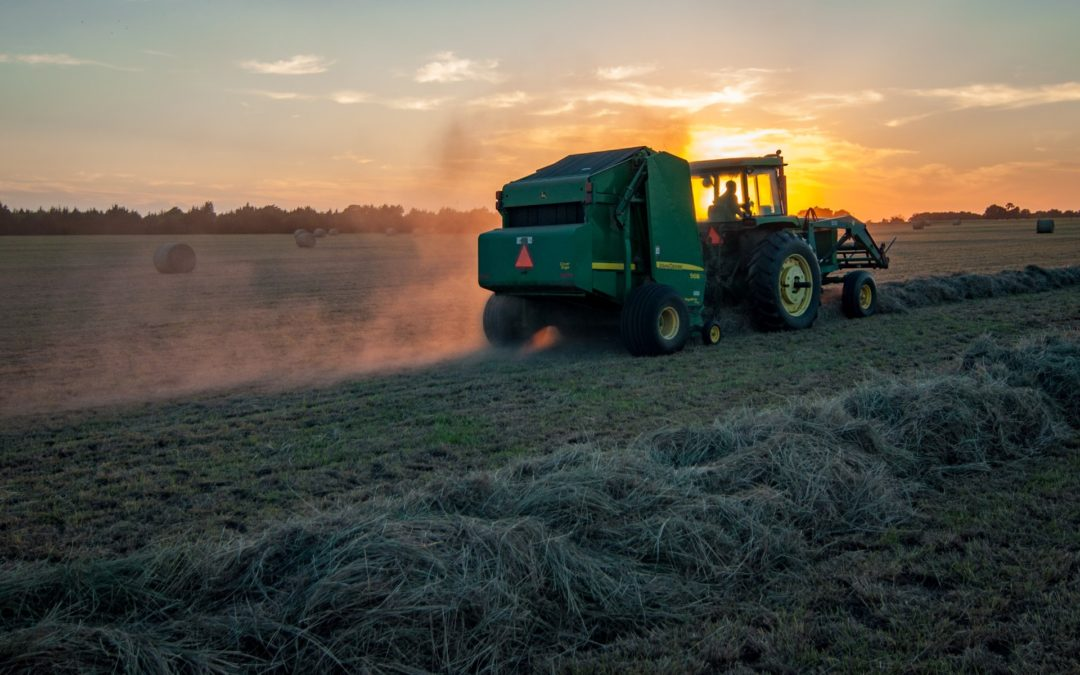 There's more to the glyphosate controversy