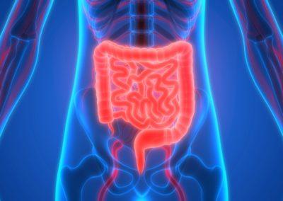 Body detox and detoxification